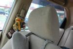 思迪驾驶员头枕图片