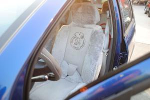 奇瑞A1驾驶员座椅图片