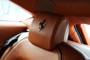 法拉利FF驾驶员头枕图片