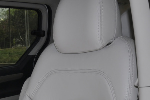 上汽大通MAXUS G10驾驶员头枕图片