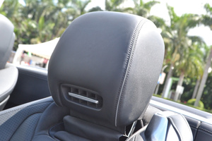 AMG SL级驾驶员头枕图片