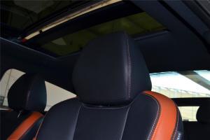 飞思(进口)驾驶员头枕图片