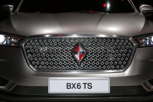 BX6 TS图片