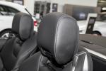 奔驰SL级(进口)驾驶员头枕图片