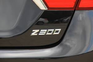 Z300尾标