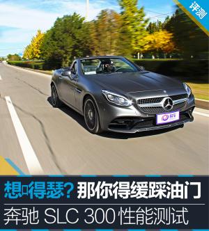 奔驰SLC级SLC300 图解-深灰色图片