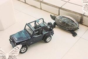 家有龟龟 陪儿子一同幸福成长