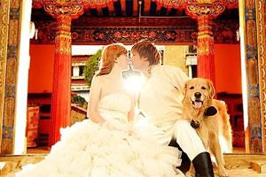 开着polo去西藏 两人一狗的幸福