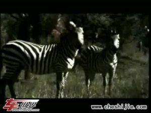 东风悦达起亚Kia狮跑Sportage宣传片