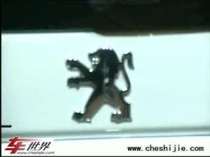 09上海车展:群狮齐聚 标致演绎精彩
