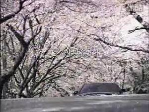 起亚欧菲莱斯韩国精彩广告公益篇