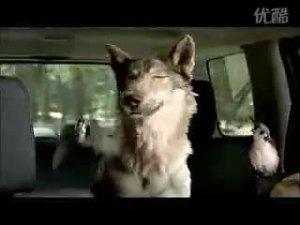JEEP广告-吉普自由人驾驶乐趣篇