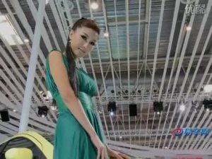 2010北京车展 江淮悦悦amt车模