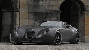 驰骋赛道 威兹曼Roadster MF5 V8