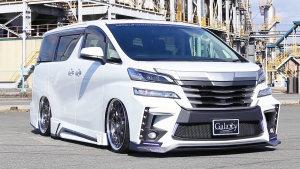 丰田埃尔法/VELLFIRE改装版 炫酷保姆车