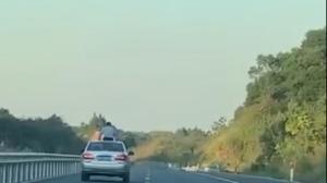 男子耍帅在环城高速上半个身体从天窗探出后发生事故