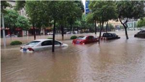 被台风损坏的汽车保险公司会怎么赔?终于搞明白了
