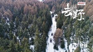 去野:冬季芦芽山雪地穿越(正片)