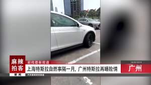 上海特斯拉自燃事隔一月,广州特斯拉再曝险情