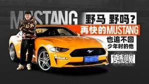 《韩贩》野马 野吗?再快的Mustang也追不回少年时的他!