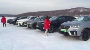 各种颜色的绿牌WEY VV7,你喜欢哪一款?